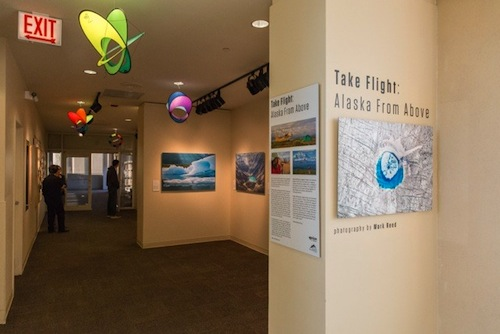 Take Flight Exhibit